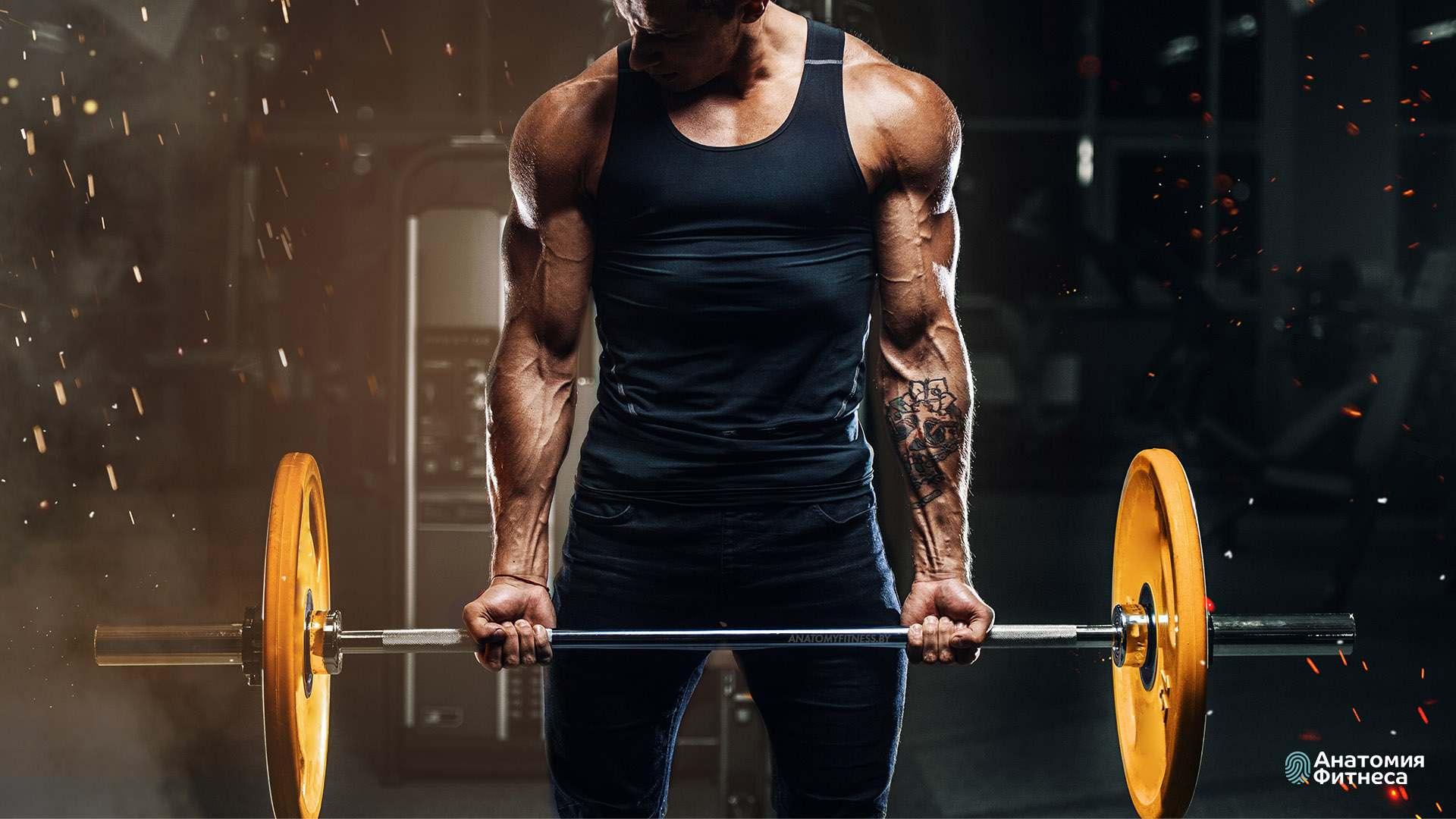 Курс «Силовой тренинг со свободными весами»
