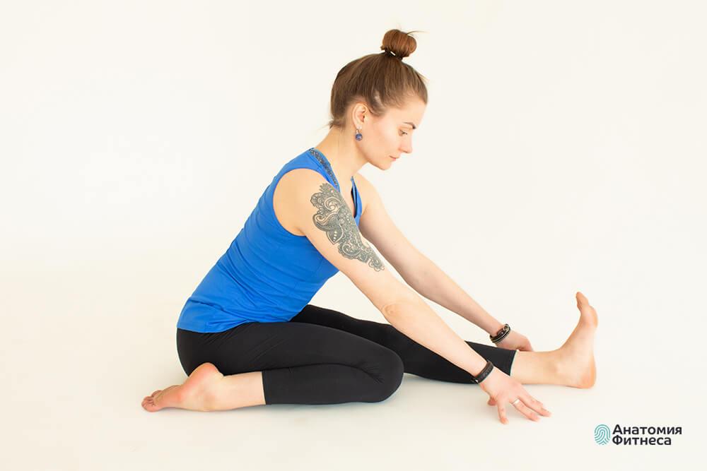 Дистанционный курс «Стретчинг: развитие гибкости»